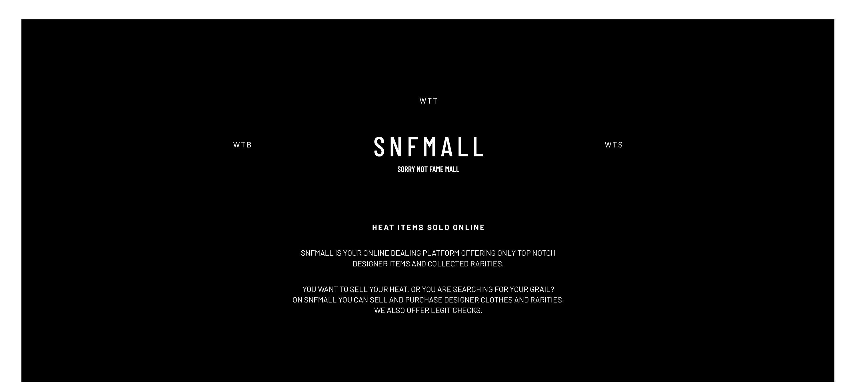 03-blockundstift-snf-mall-sorry-not-fame-mall-screendesign-website-design-instagram-schrift